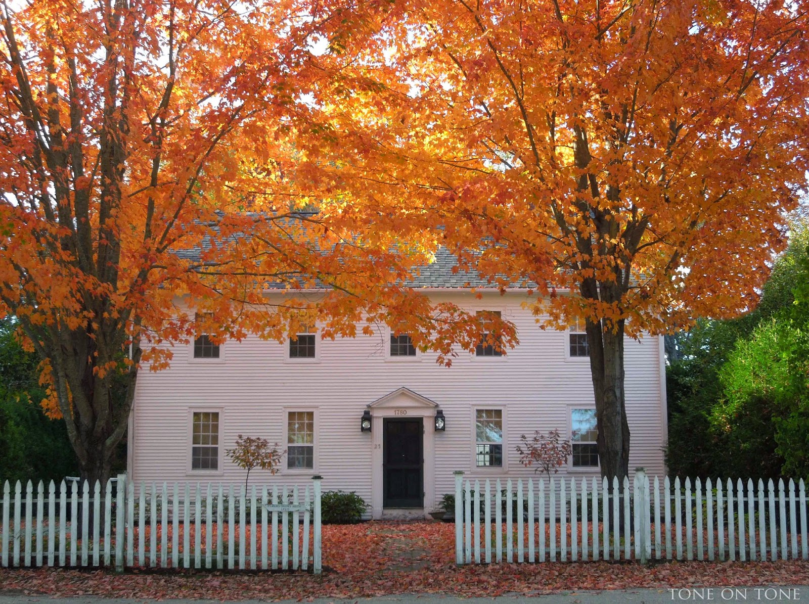 castine maine in fall Loi Thai from tone on tone